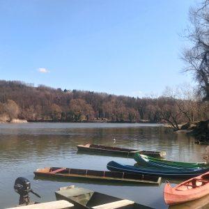 Rijeka Drava